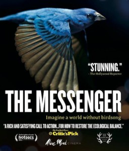 the messnger