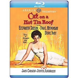 an introduction to the comparison of the movie and the play cat on a hot tin roof This article is about the play for the movie adaptations, see cat on a primarily between his son brick and maggie the cat, brick's wife cat on a hot tin roof features several recurring motifs, such ^ albee, edward: introduction for cat on a hot tin roof, p 8 new directions.